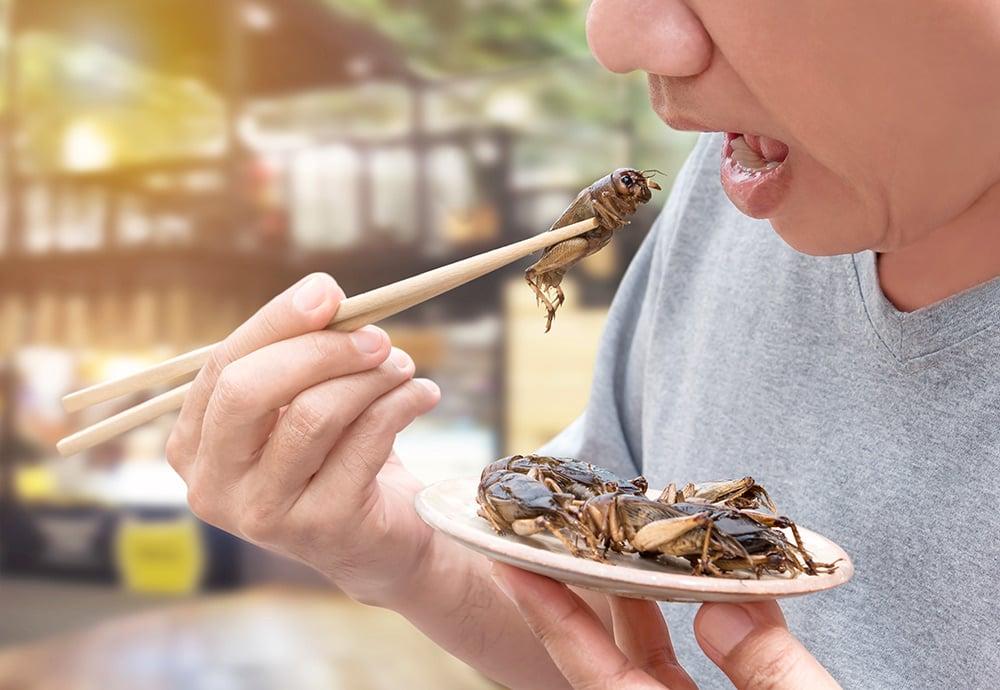 Hombre comiendo grillos ayudado por unos palillos en Asia