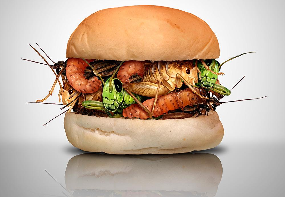 Recreación de una hamburguesa hecha con insectos